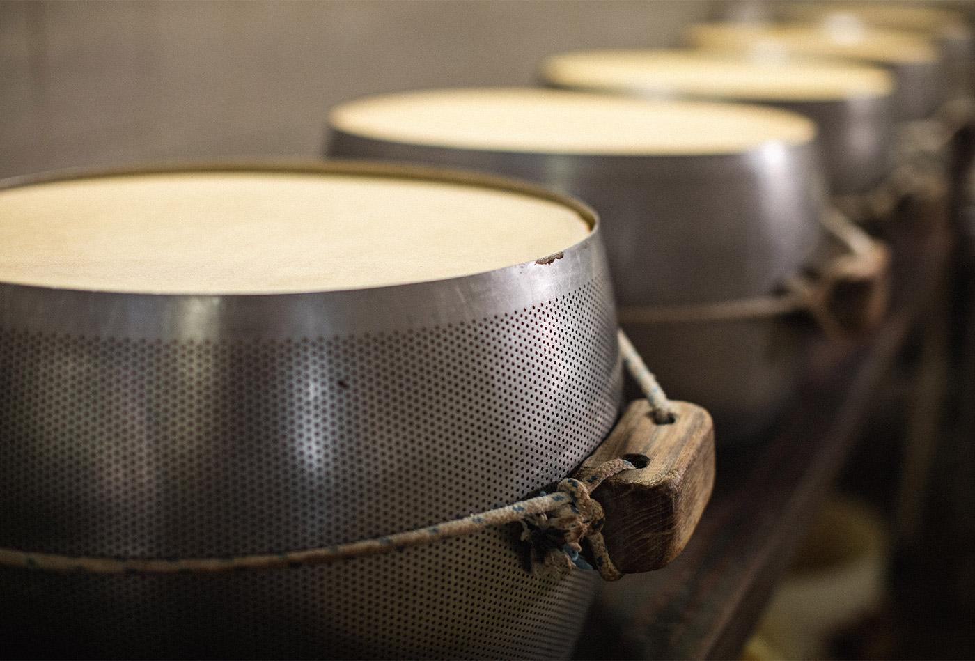 fase di produzione del parmigiano reggiano